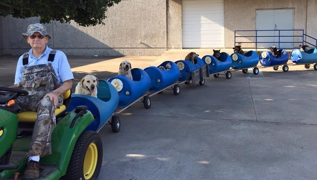 honden trein verwaarloosd