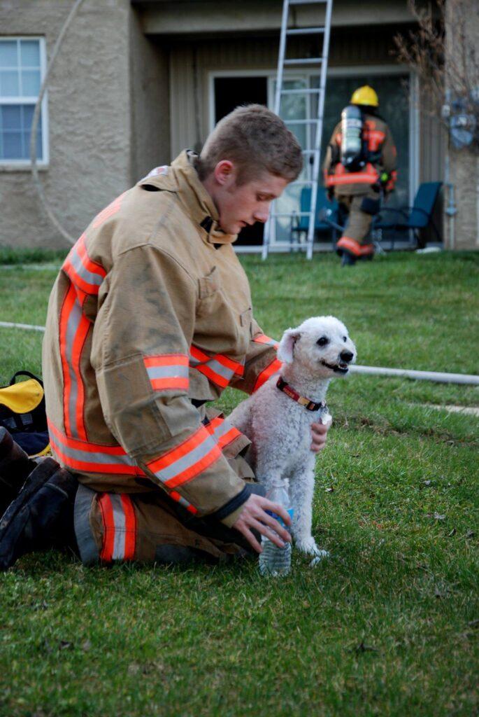 hond gered uit brand