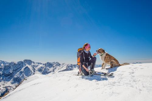 hond skiën
